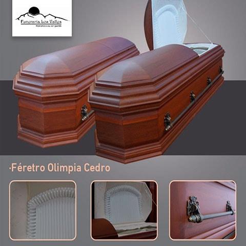 Urna Olimpia Cedro